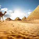 Египет посетило рекордное количество украинцев